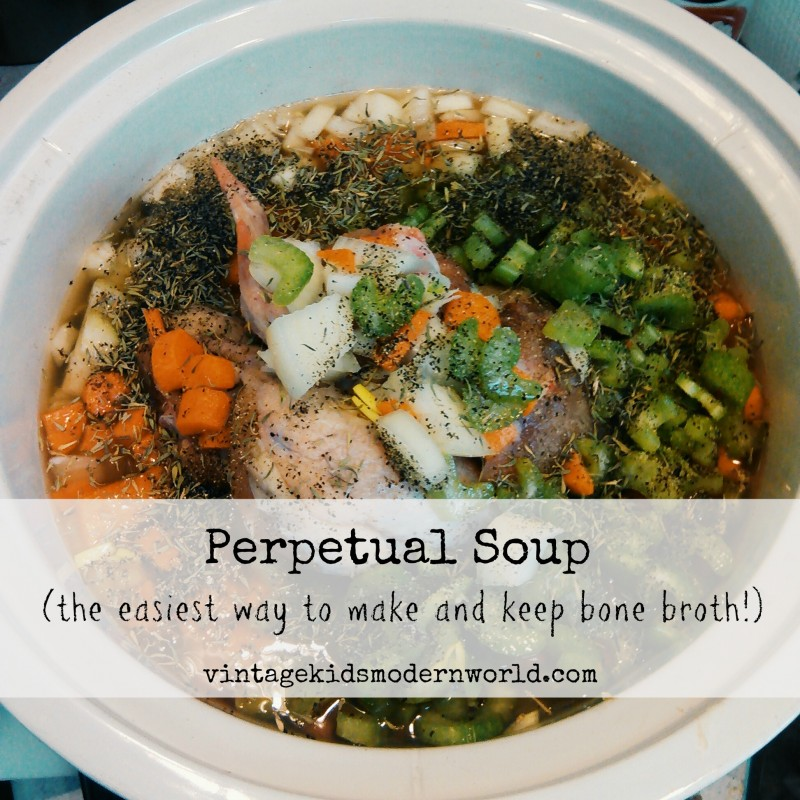Perpetual Soup (The Easiest Way To Make and Keep Bone Broth) :: Vintage Kids | Modern World