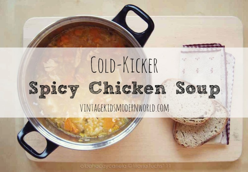 Cold Kicker Spicy Chicken Soup :: Vintage Kids | Modern World