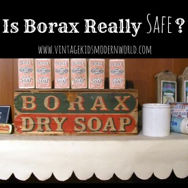 Is Borax Really Safe? :: Vintage Kids | Modern World