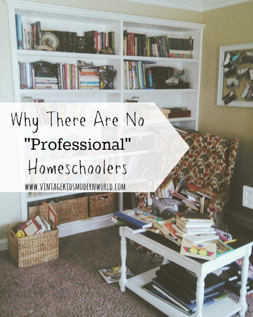 "Why There Are No ""Professional"" Homeschoolers ::  Vintage Kids 