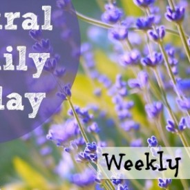Natural Family Friday Link Up at Vintage Kids | Modern World